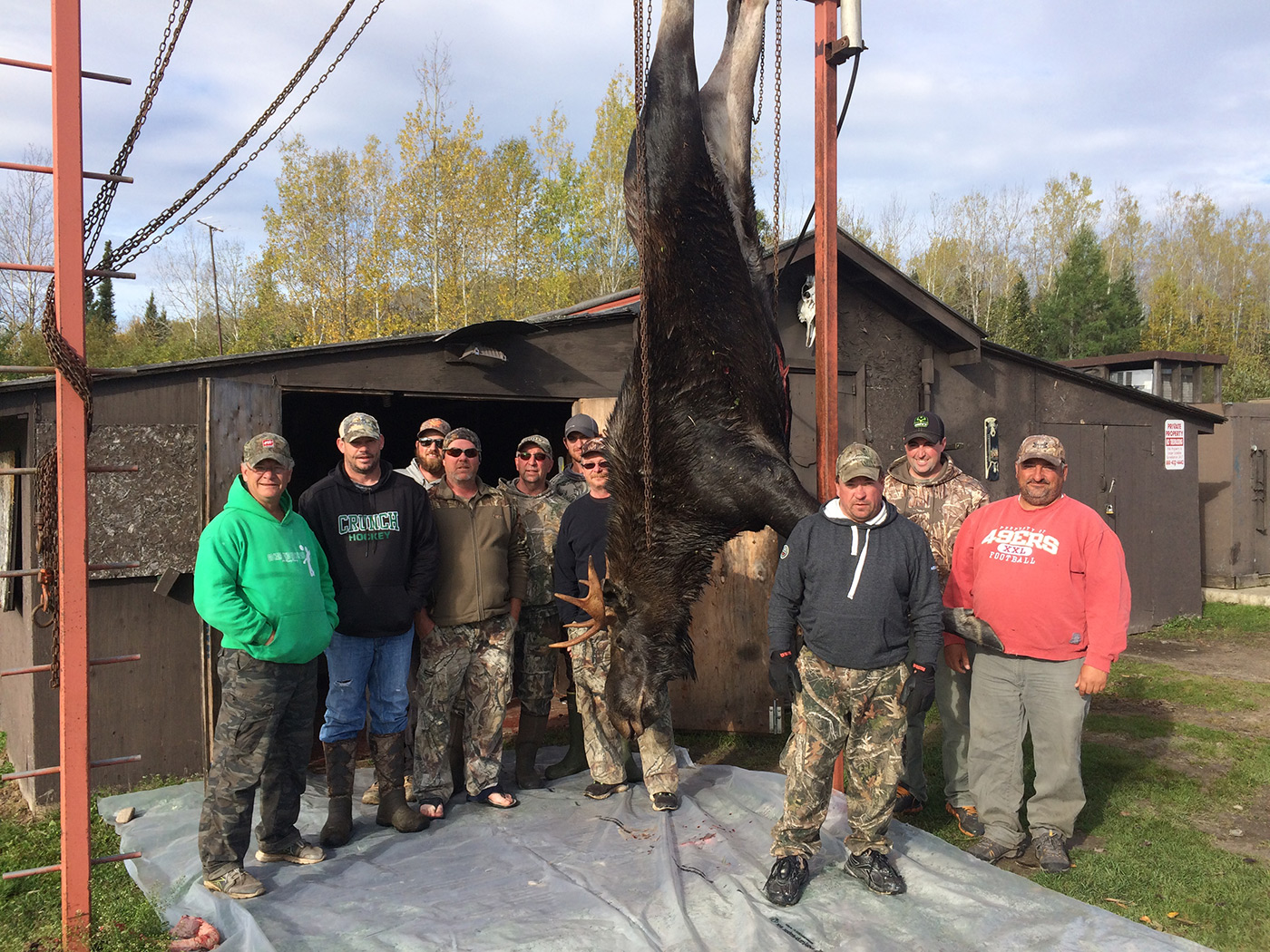 Group Of People With Huge Moose