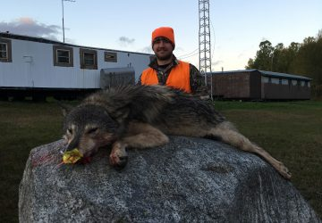 Man Smiling With Timber Wolf